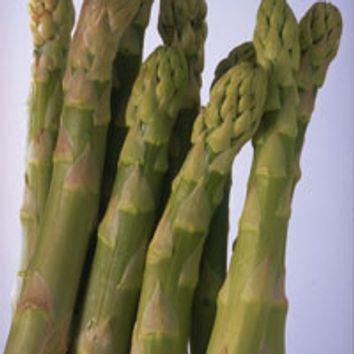 Réussir la culture des legumes potager I-Moyenne-9041-reussir-la-culture-des-asperges.net